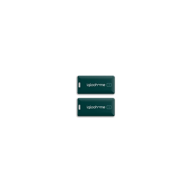 igloohome Rim Lock with Smart Mortise 2+ - 13