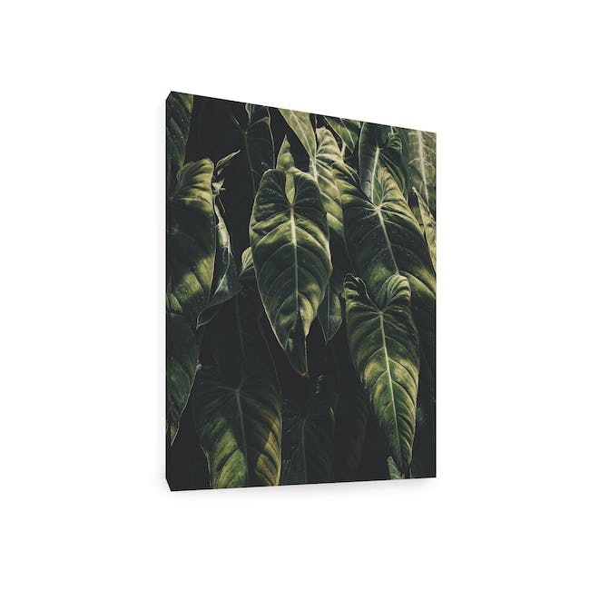 Florae Art Print on Stretched Canvas 50cm by 70cm - Paradisiaca - 1