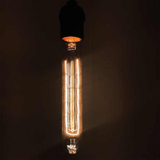 Edison T185 Squirrel Tubular Filament Bulb - 1