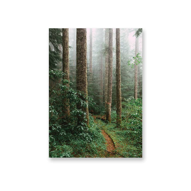 Borderless Adventure Art Print on Paper (2 Sizes) - Forest Path - 0