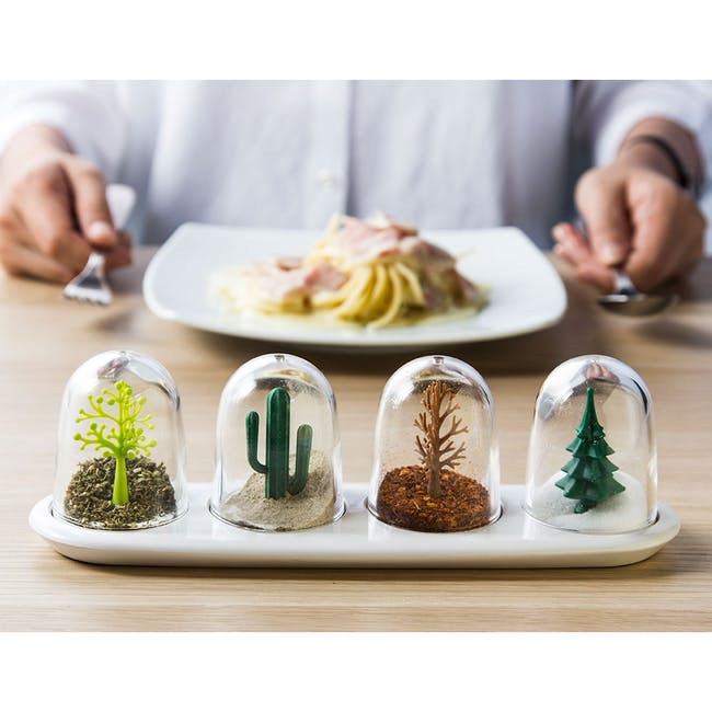 Four Seasons Seasoning Shaker Set - 1