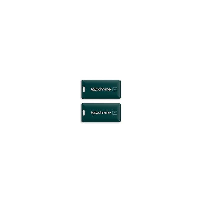 igloohome Rim Lock with Push-Pull Mortise - 16