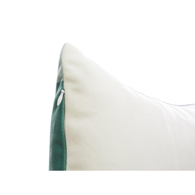 Todd Plush Cushion Cover - 1