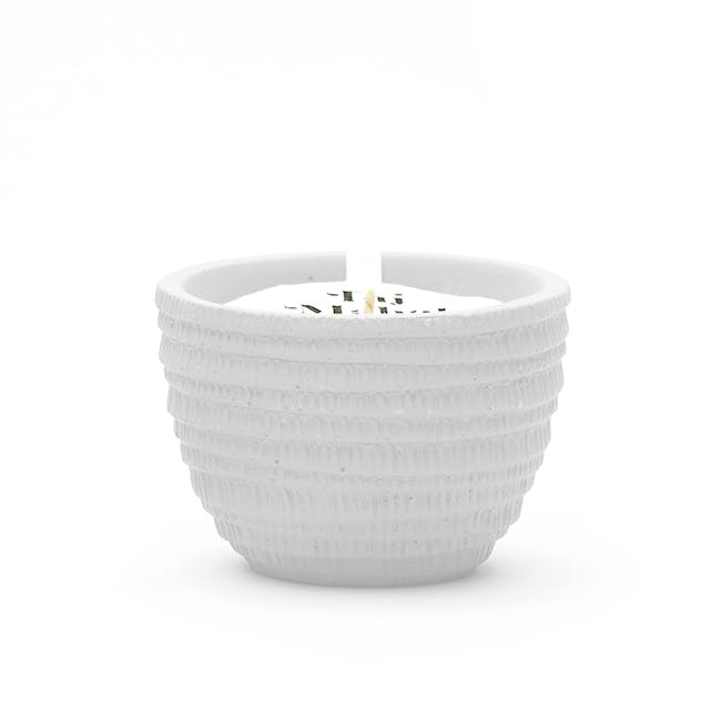 Pass It On Plantable Candles - Great Barrier Reef - 0