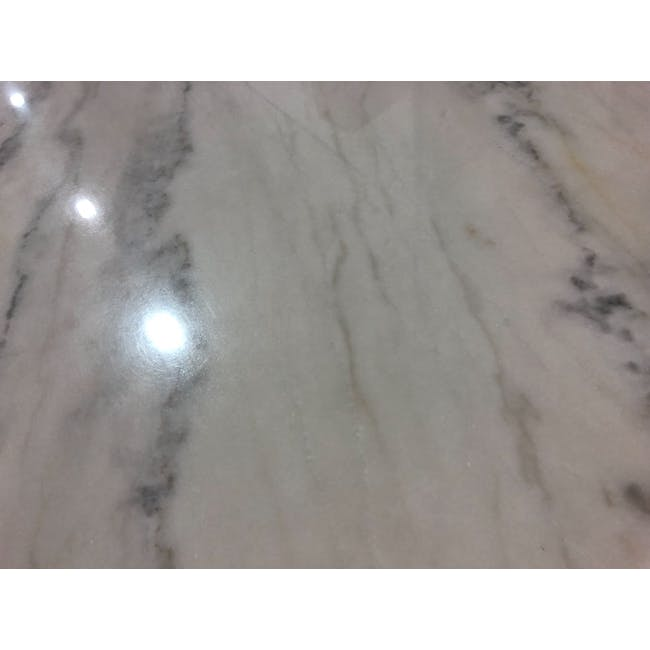(As-is) Hagen Marble Dining Table 1.8m - 4 - 16