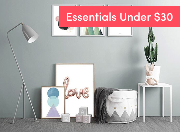 Home Essentials under $30
