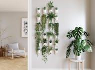 Shop Wall & Garden Decor