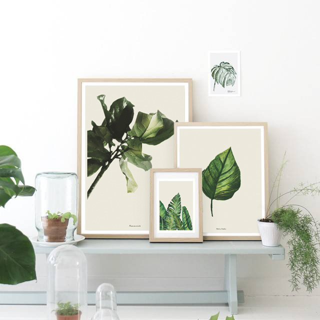 Botanical Trend
