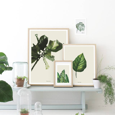 Botanical Accents
